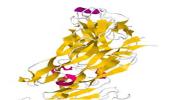 Wereldvermaarde virusjager W. Lipkin bevestigd mogelijkheid van cytokinemeting als biomarkers bij ME/CVS